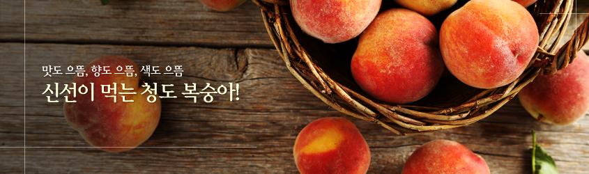 맛도 으뜸, 향도 으뜸, 색도 으뜸 신선이 먹는 청도 복숭아!
